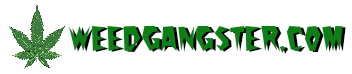 WEEDGANGSTER – FEED IT!
