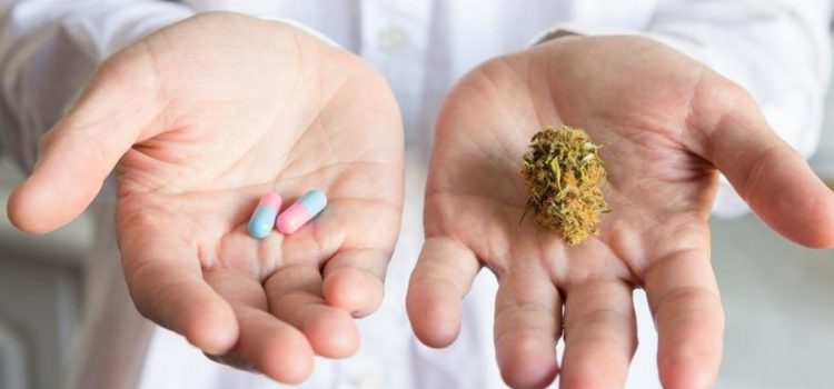 doctors-prescribe-certain-opioids-20%-less-in-medical-marijuana-states,-study-finds