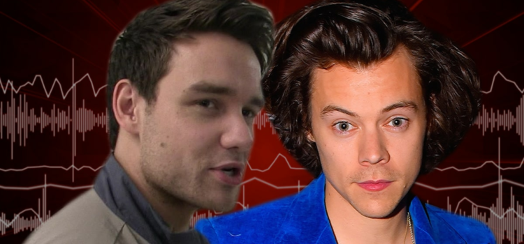 liam-payne-says-harry-styles-looked-great-in-a-dress-for-vogue-photoshoot