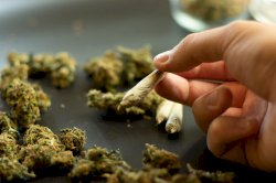 idaho-senate-advances-proposal-to-constitutionally-ban-cannabis-in-the-disclose