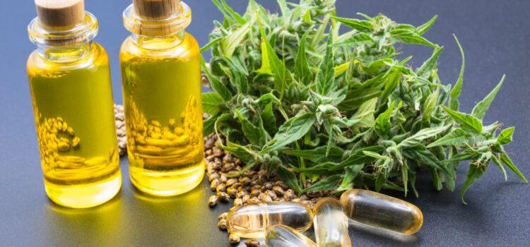 alabama-legislature-passes-sb-46-to-bring-legal-medical-cannabis-to-the-state