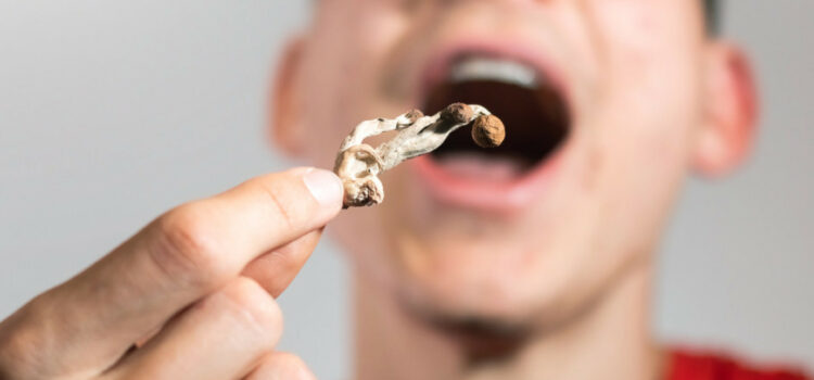 Over One Third of US Voters Know Psychedelics Have Valid Medical Use, Poll Says